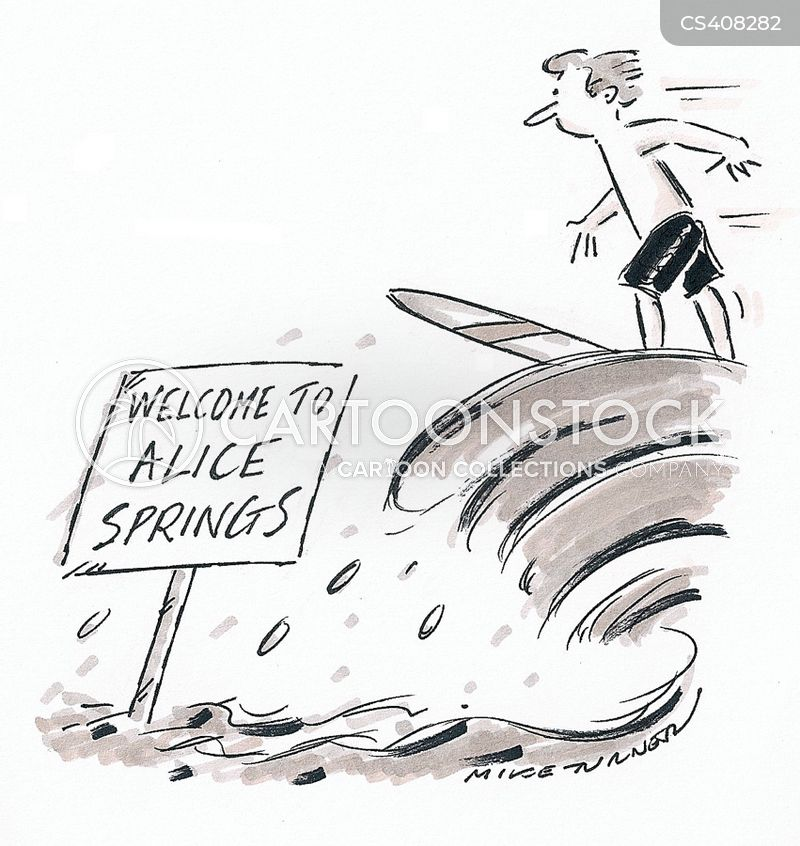 queensland flood cartoon