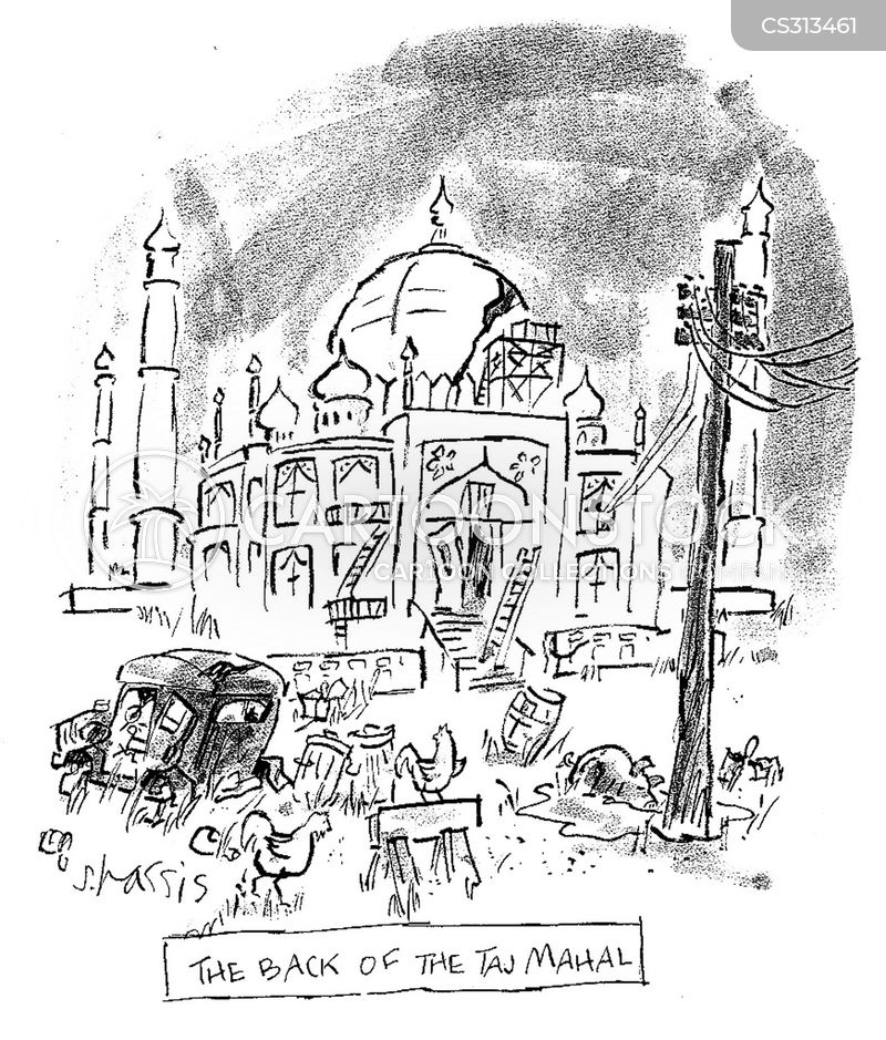 taj mahal cartoon