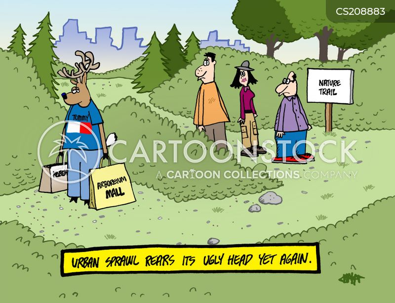 nature trail cartoon