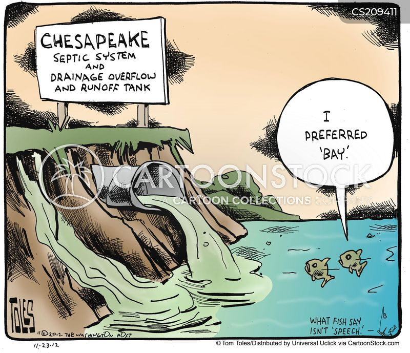 chesapeake bay cartoon