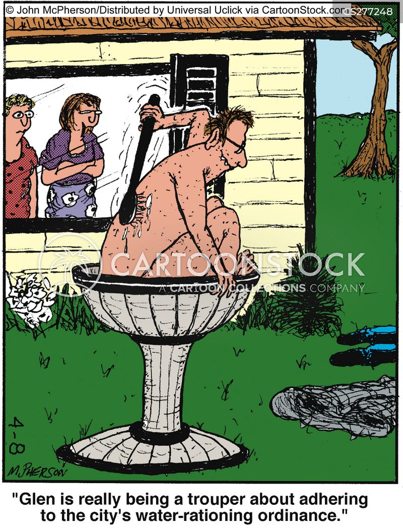 bird baths cartoon