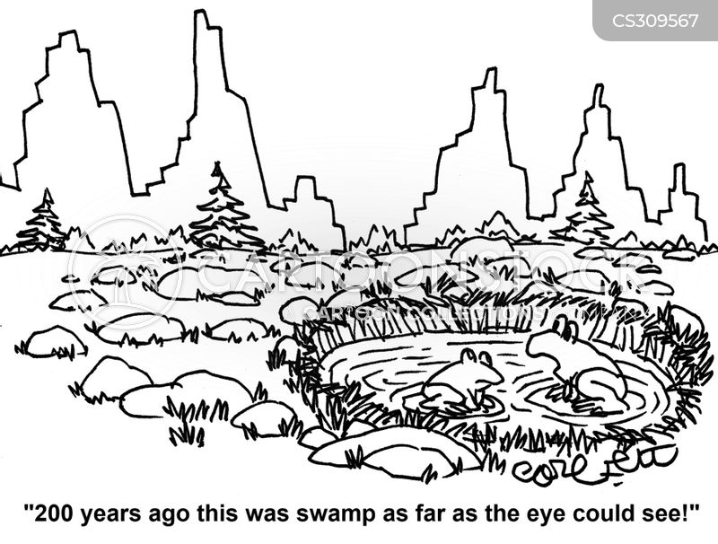 wetlands cartoon