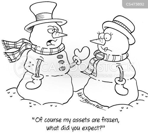 frozen asset cartoon