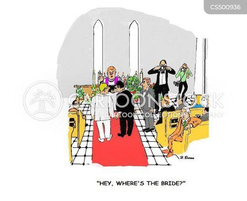 gay weddings cartoon