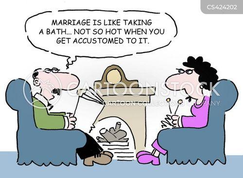 marital bliss cartoon