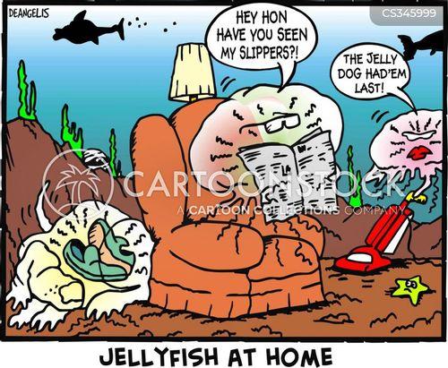 jelly fish cartoon
