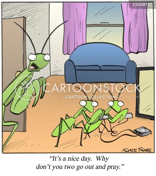 praying mantises cartoon