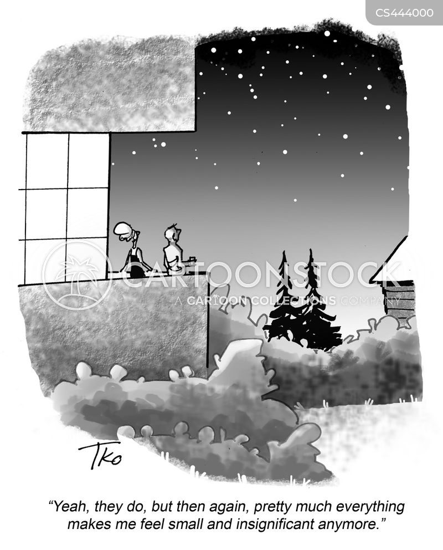 life evaluation cartoon