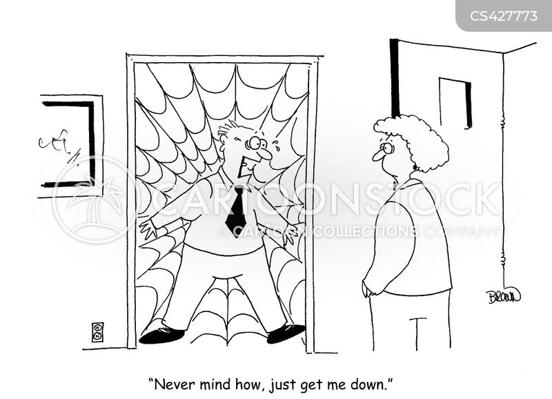 spider-webs cartoon