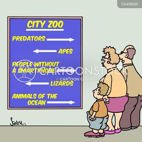 city zoo cartoon