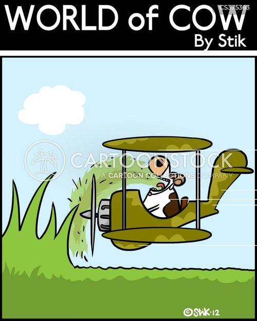 lawn mowing cartoon