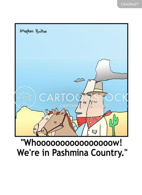 pashmina cartoon