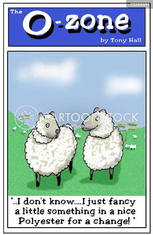 woollen cartoon