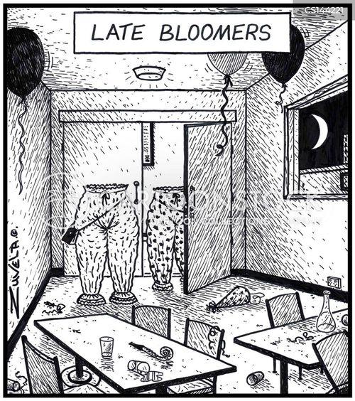 bloomers cartoon