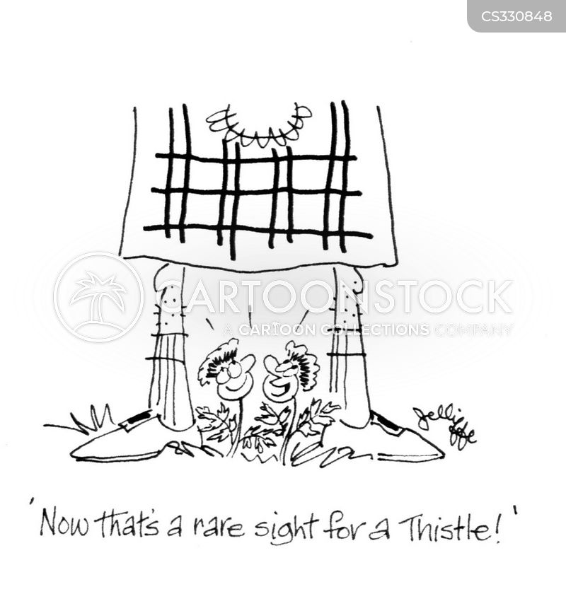 thistles cartoon