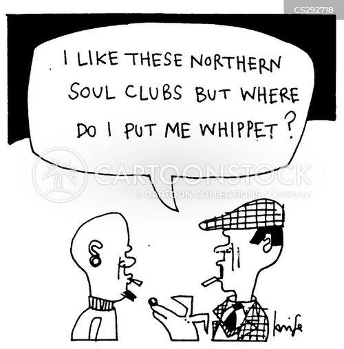 whippet cartoon