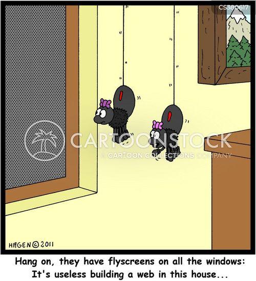 flyscreen cartoon