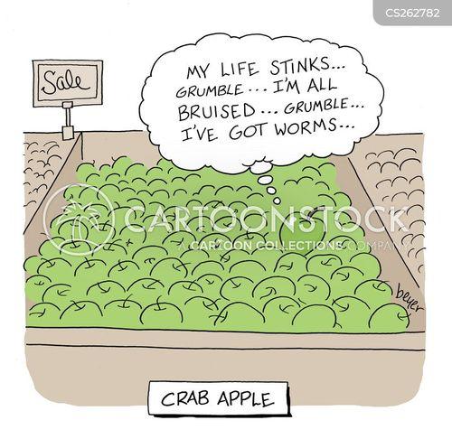 crabby cartoon
