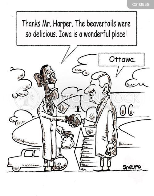 stephen cartoon