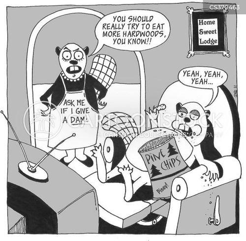 hardwood cartoon