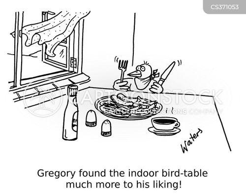 birdtables cartoon