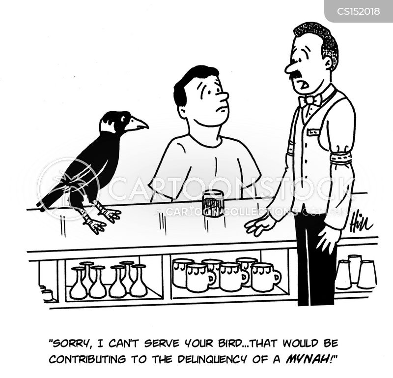 mynah birds cartoon