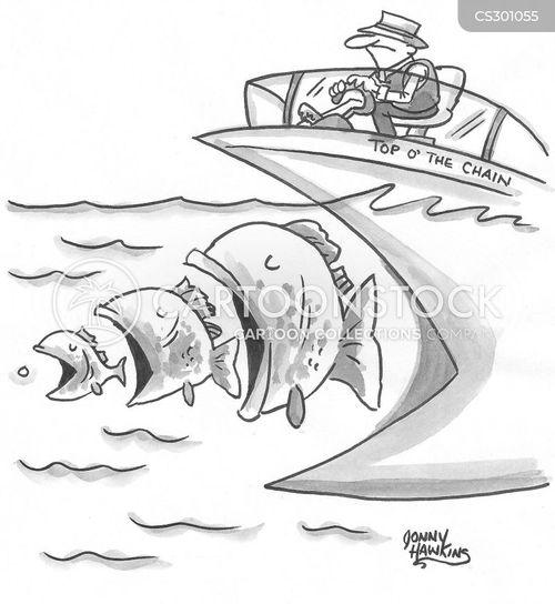 open water cartoon