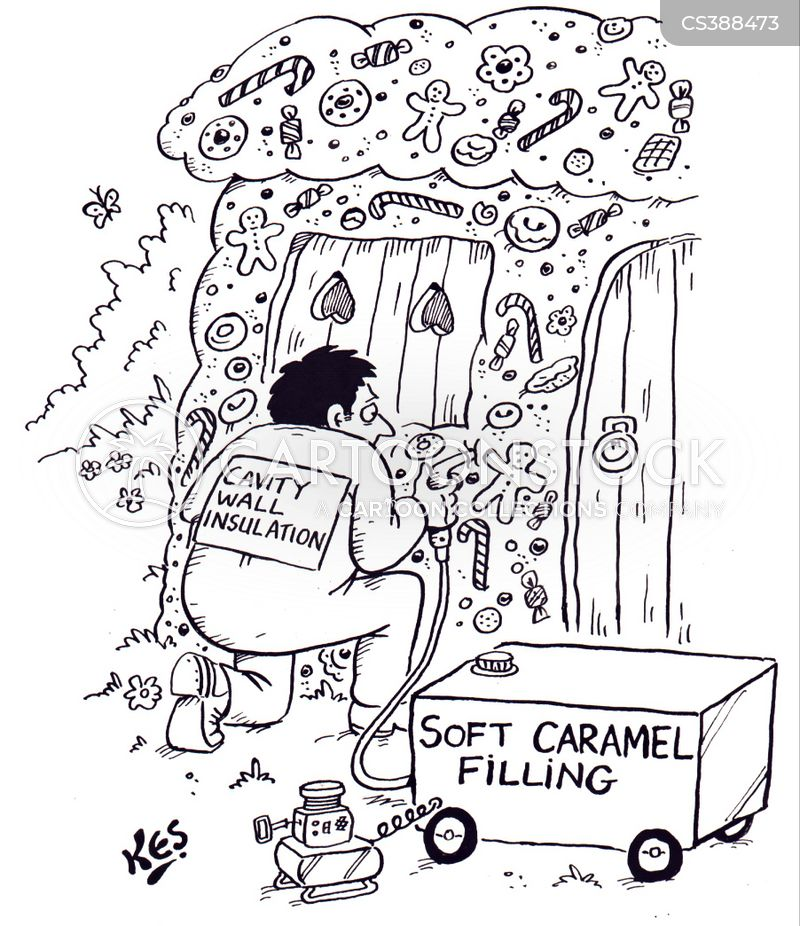 cavity wall insulation cartoon