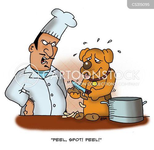 kitchen boys cartoon