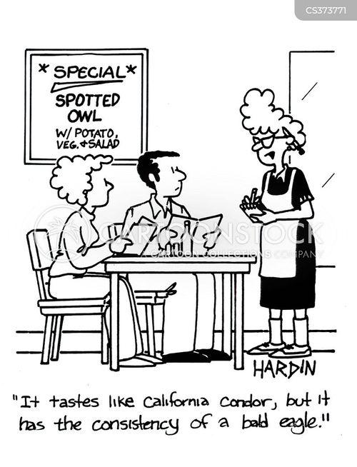 california condors cartoon