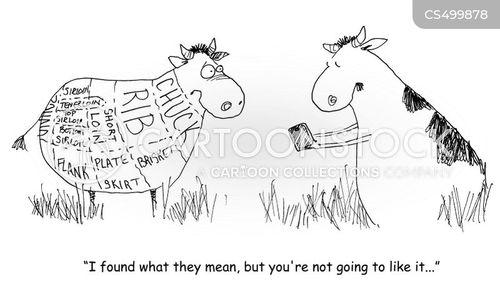 meat cuts cartoon