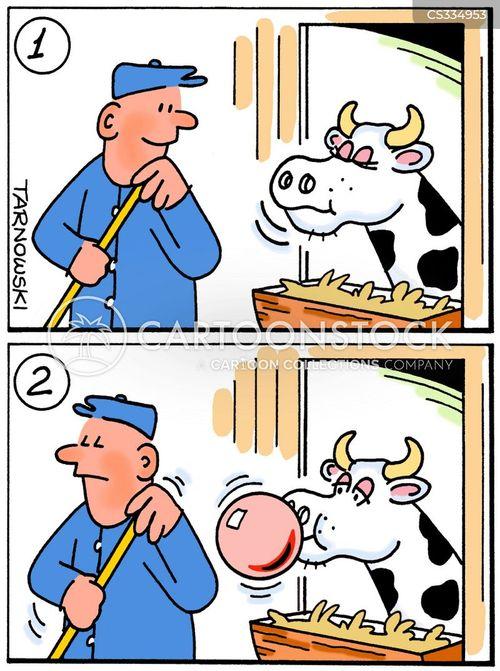 chewing cud cartoon