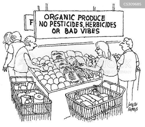 organic produce cartoon