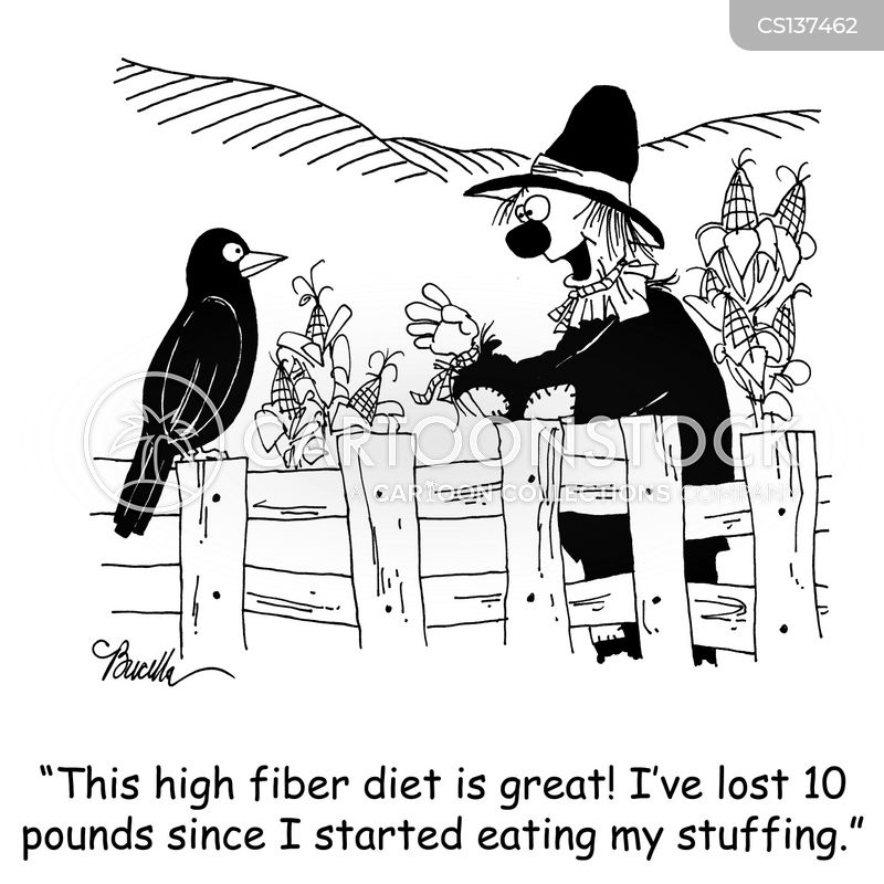 high fiber diet cartoon