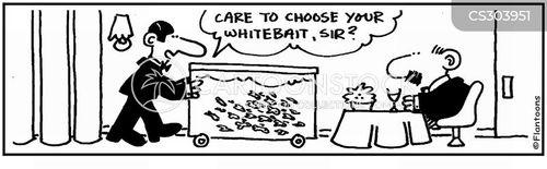 whitebait cartoon