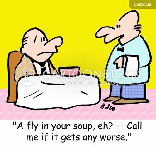 flys cartoon