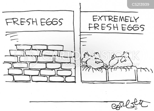 fresh egg cartoon