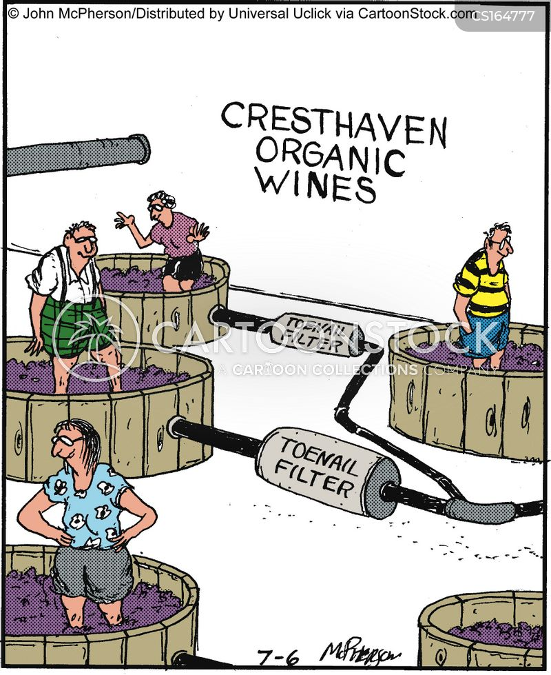 wineries cartoon