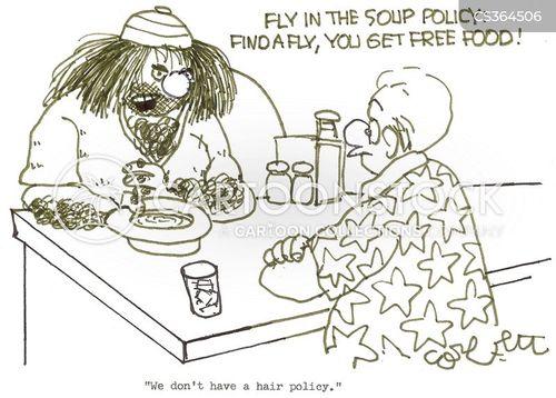 fly in my soup cartoon