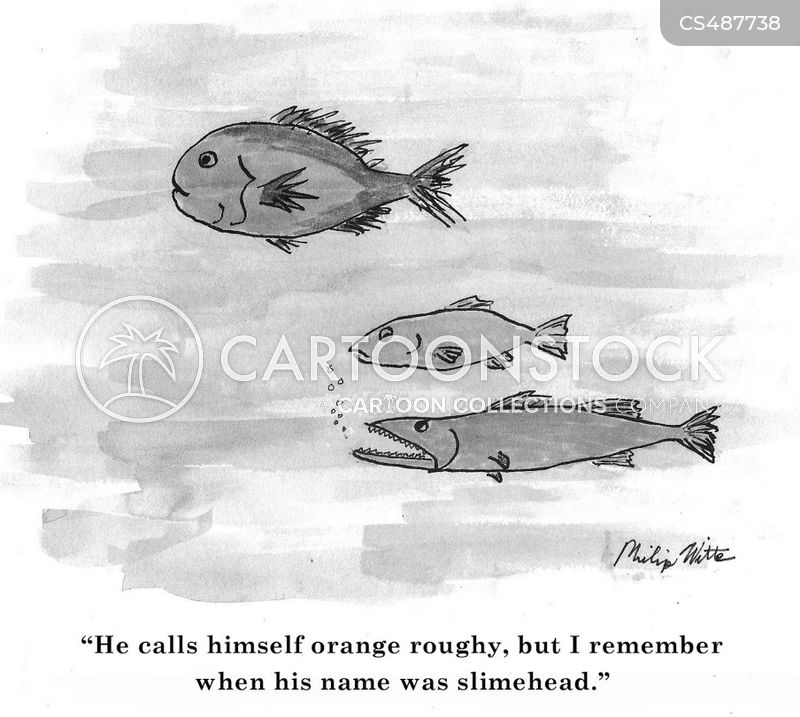 orange roughy cartoon