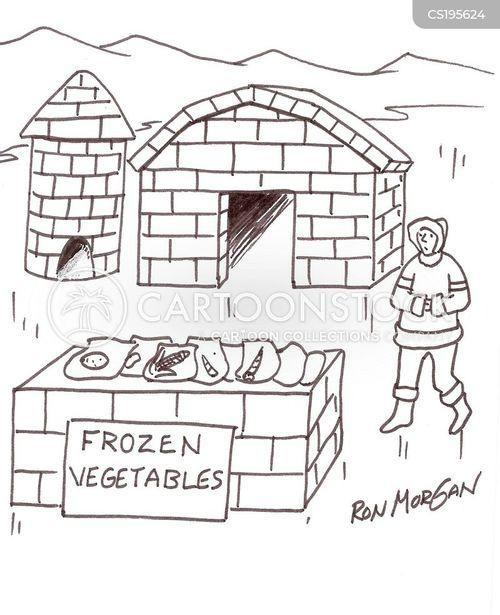 frozen vegetables cartoon