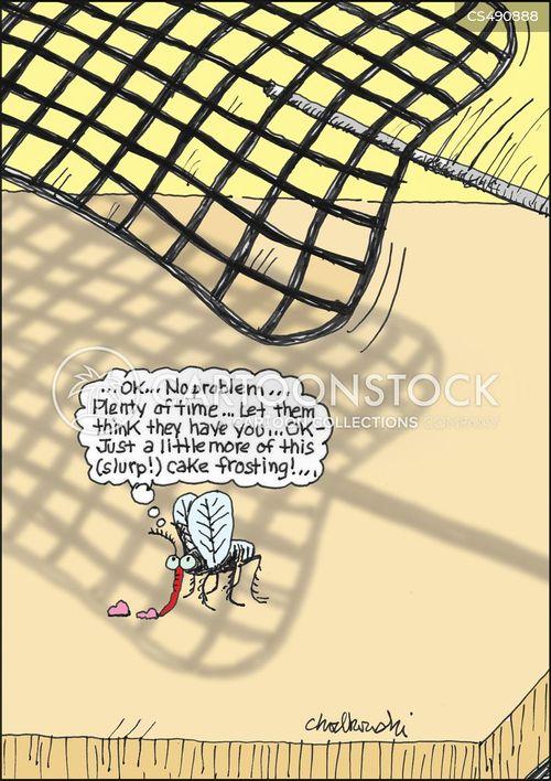 flyswatters cartoon