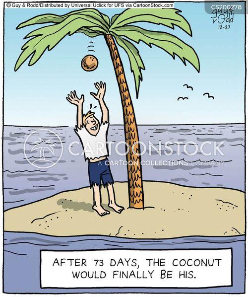 coconuts cartoon