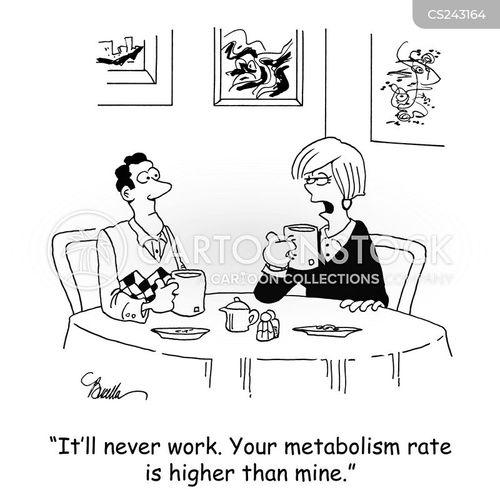 counting calories cartoon