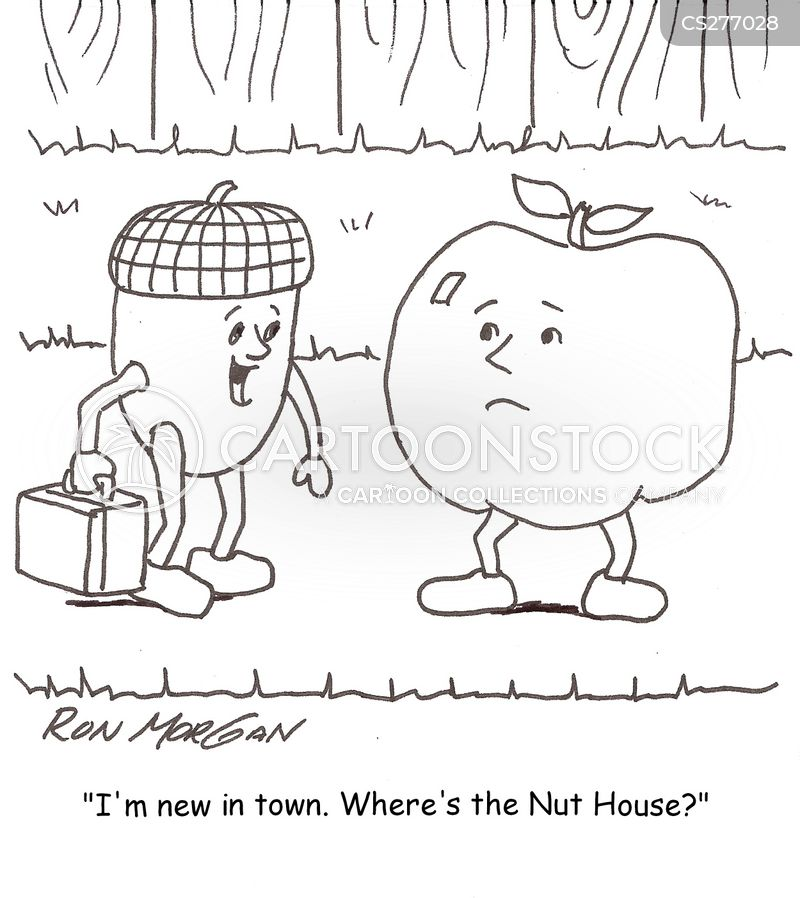 moved house cartoon