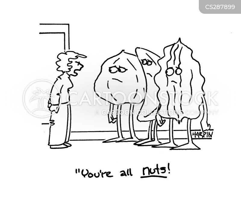 pine nut cartoon