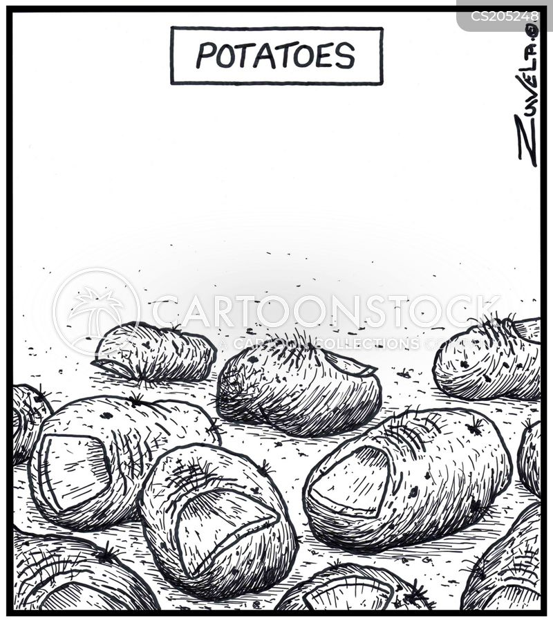 podiatrist cartoon