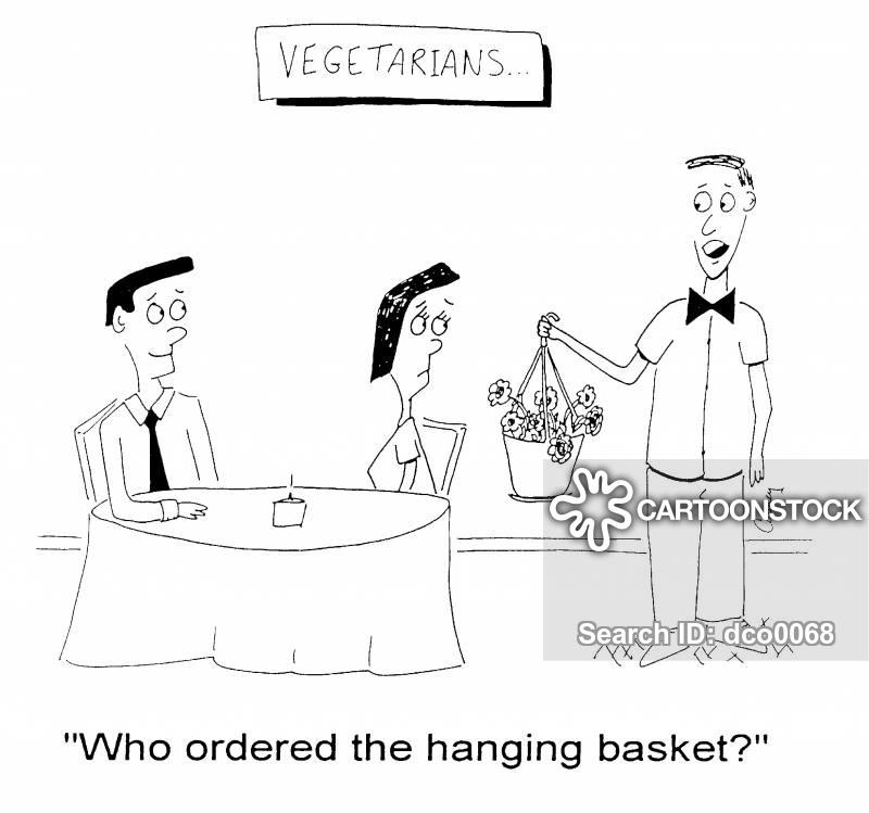 hanging basket cartoon