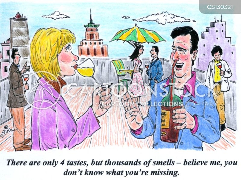 wine taster cartoon