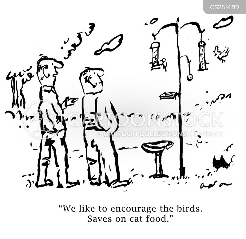 bird table cartoon